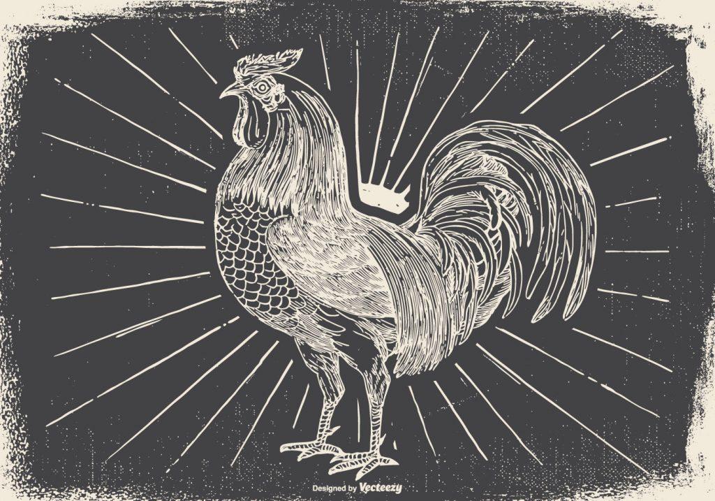 DD-Vintage-Rooster-Illustration-44323-Preview