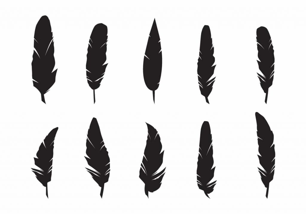 Feathers Silhouette Vector Set
