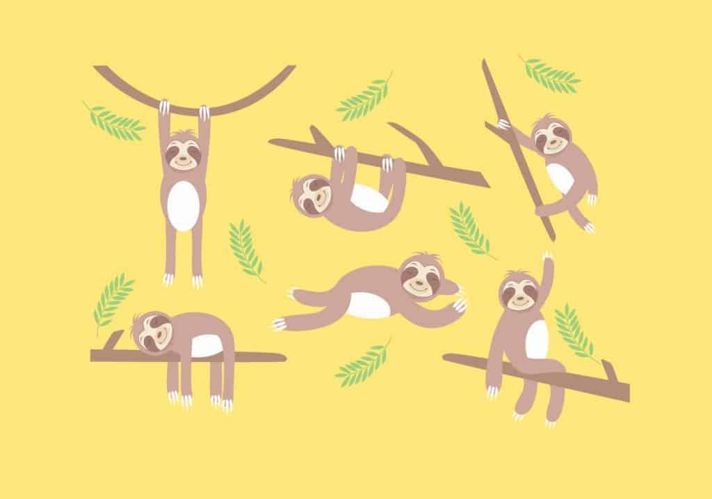 Sloth-Vector