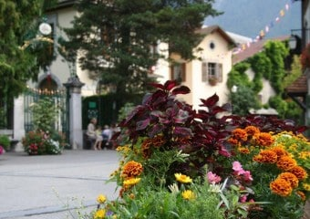 French Course in Châtel & Samoëns